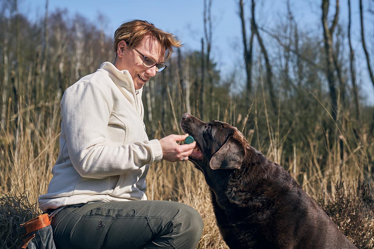 beziehungskiste-hundeschule-nasenarbeit