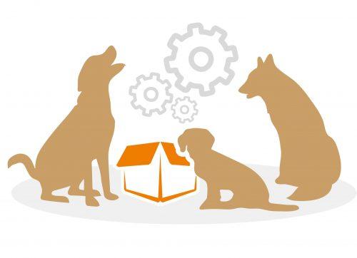 beziehungskiste-hundeschule-team